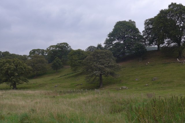 Dales Way trek from Bolton Abbey to Pinder Stile (39)