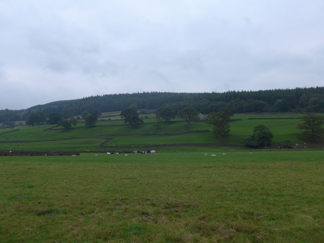 Dales Way trek from Bolton Abbey to Pinder Stile (46)