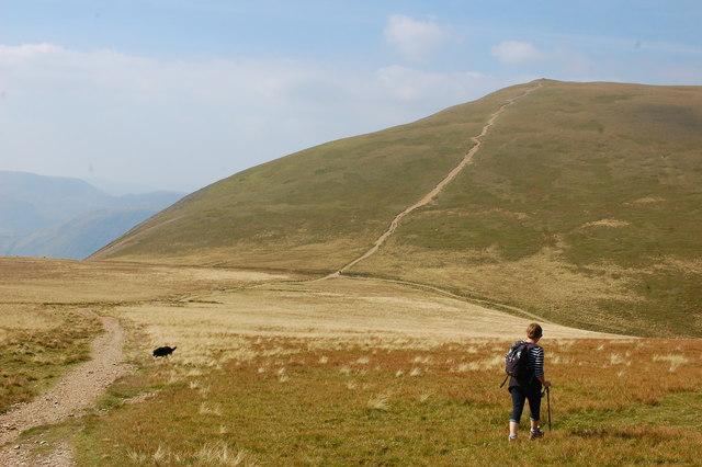 View towards Grasmoor
