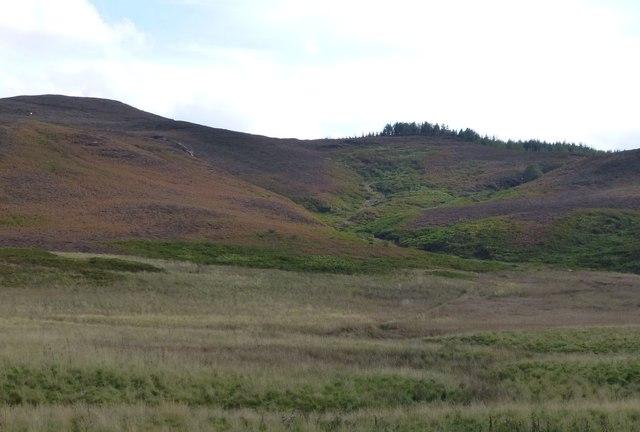 Marshland below Long Crag