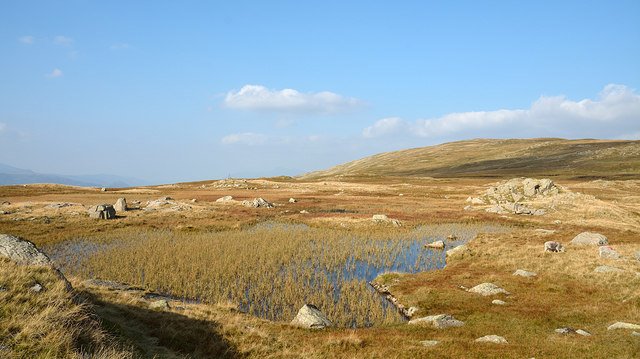 Pool with bogs south of Ullscarf