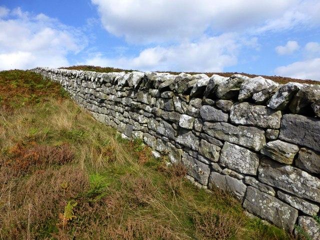 A splendid drystone wall