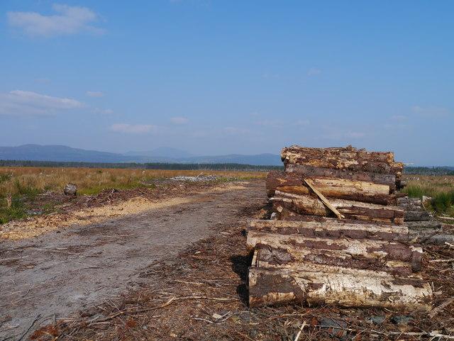 Clearfelled Forestry Land, Flanders Moss