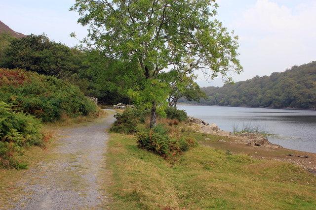 The Precipice Walk and Llyn Cynwch