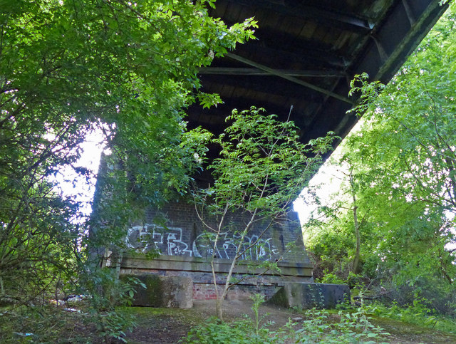 Underneath Nettle Hill Bridge