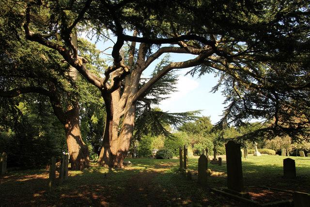 St.Edith's churchyard