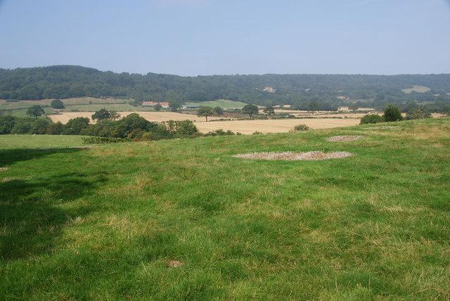 Fields by Newbiggin Hall