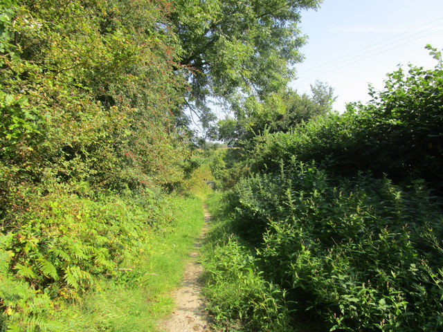 Footpath to Yeadings Farm