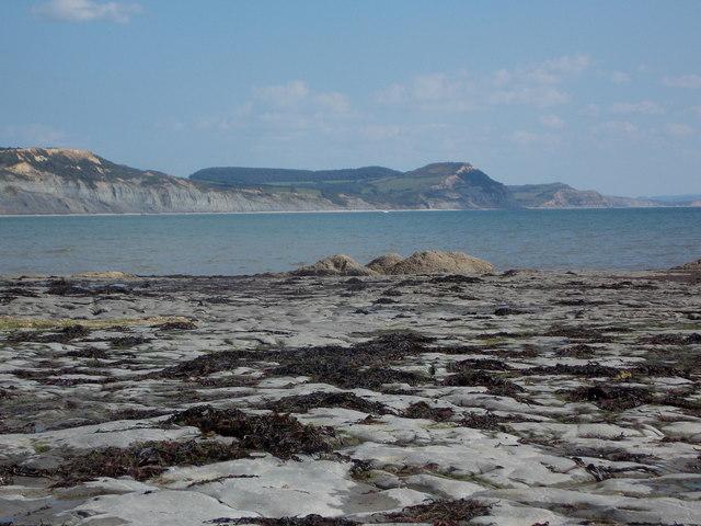 Lyme Regis: northern edge of Broad Ledge