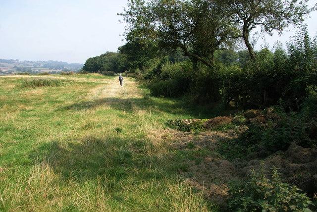 The Esk Valley Walk near Newbiggin Hall