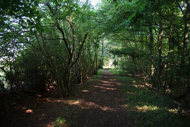 Footpath through Hecks Wood