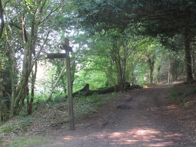 Signpost in Briants Puddle Plantation