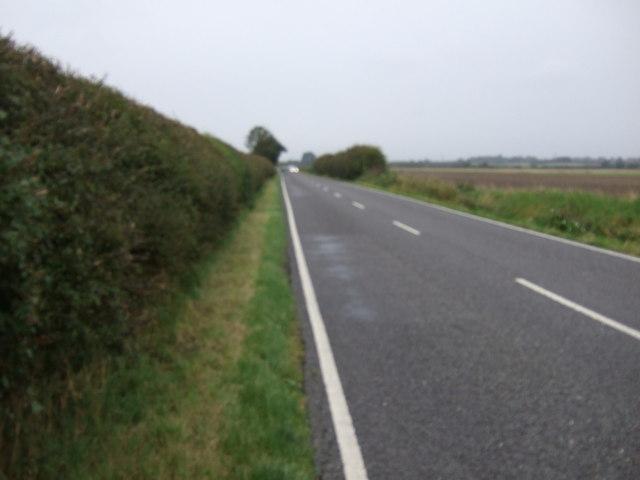 North Moor Road