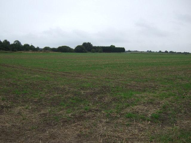 Farmland towards Newstead