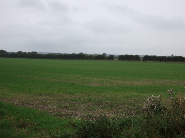 Farmland off Black Bank
