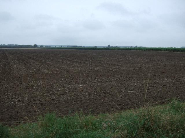 Flat farmland off Black Bank