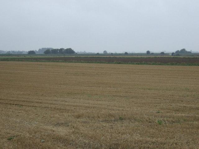 Stubble field near Black Bank Farm