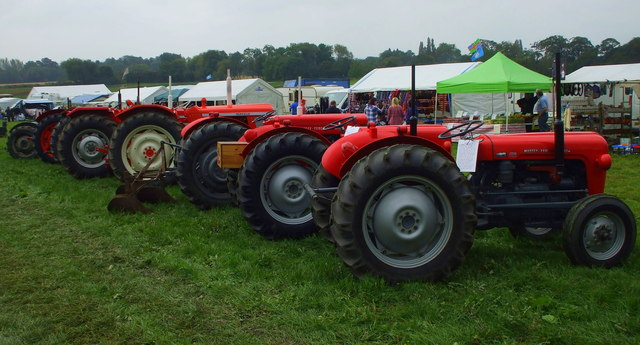 A line of Little Red Fergie's in Ackworth Show Field