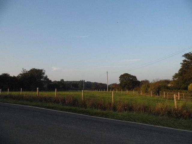 Field by Brittleware Farm