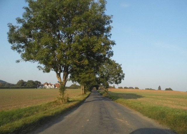 Kiln Lane, Betchworth