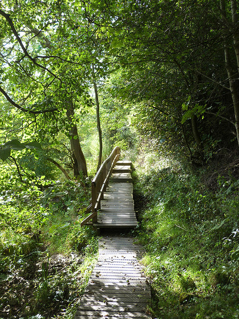 Border Abbeys Way above Hornshole Bridge