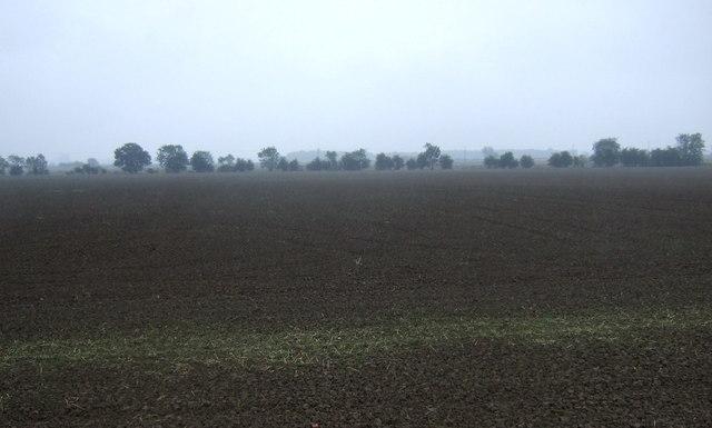 Flat farmland near Ings Farm