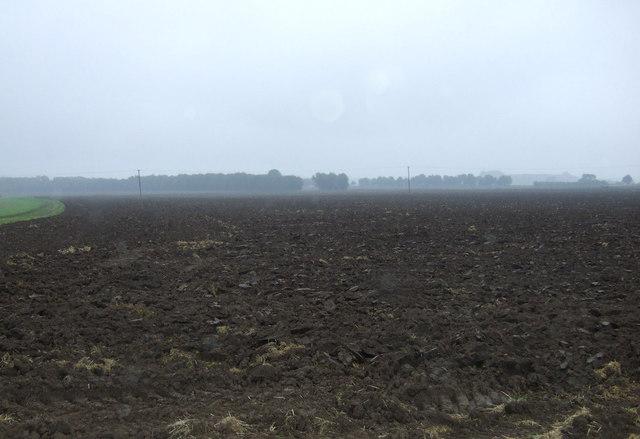 Flat farmland near East Ferry