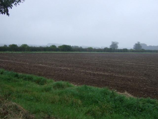 Flat farmland east of East Ferry