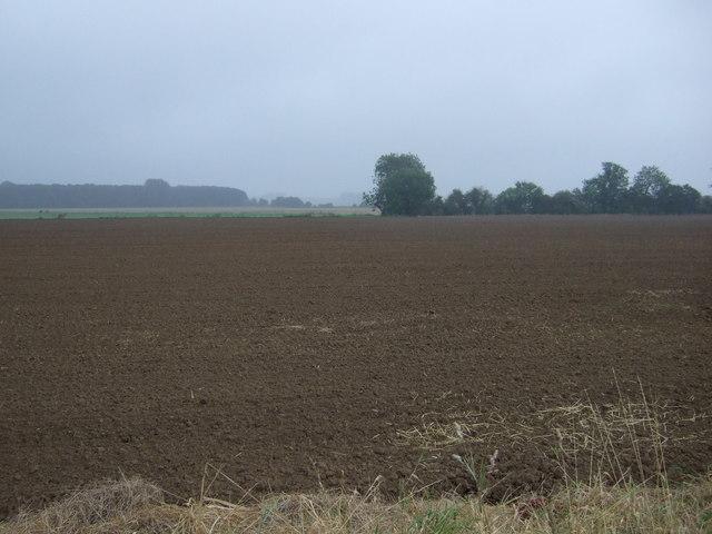 Flat farmland near the River Trent