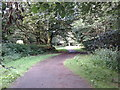 SX0863 : Cycle and footpath near Lanhydrock House by Rob Purvis