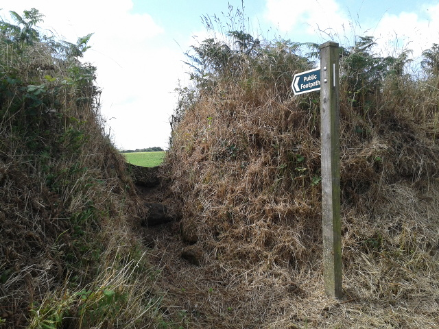 Footpath into a field