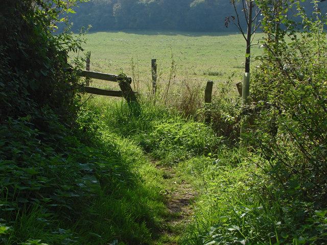 Footpath near Binscombe
