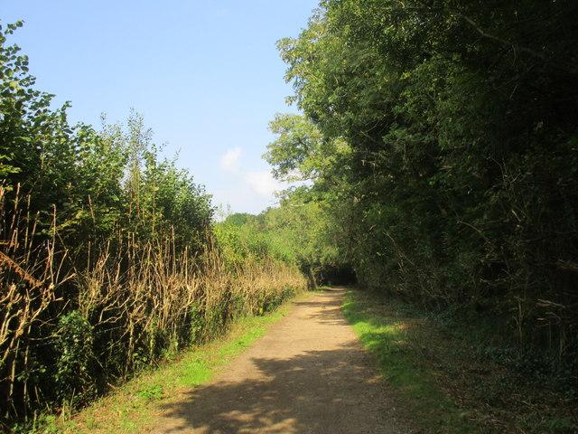 Jubilee Trail near Moreton