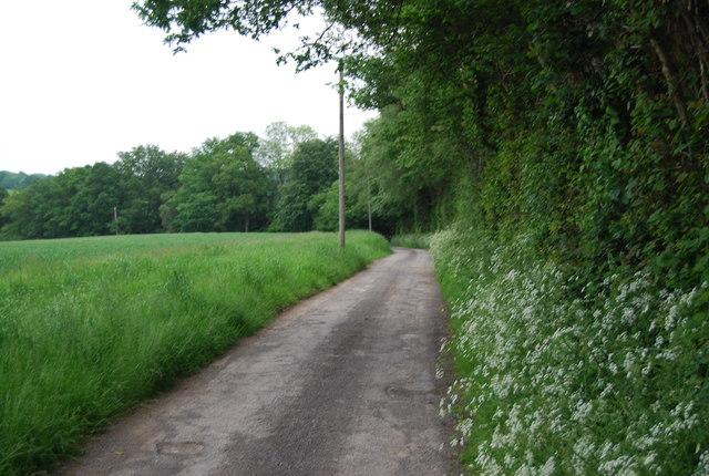 Footpath to Butcherfield Lane