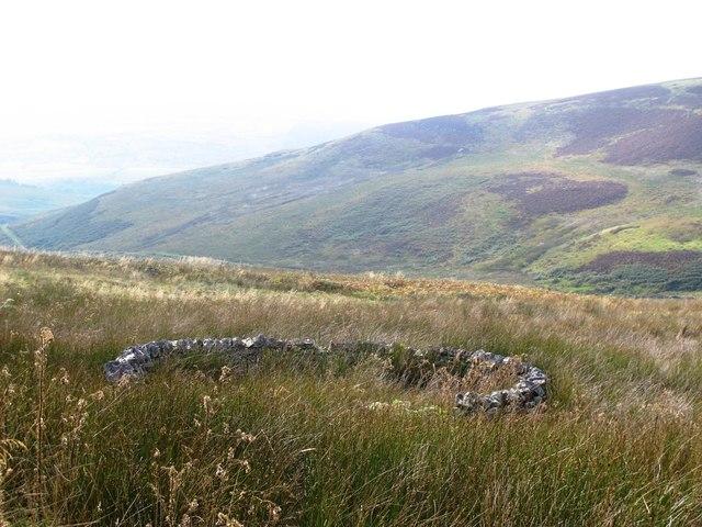 Sheepfold east of Gairs (2)