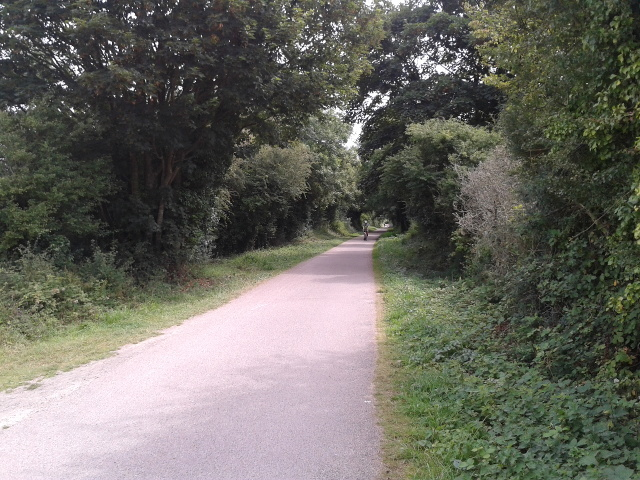 On the Camel Trail heading to Wadebridge
