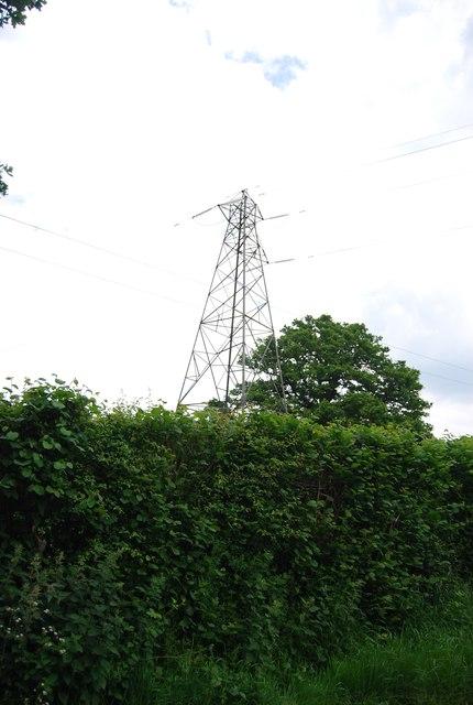 Pylon by Butcherfield Lane