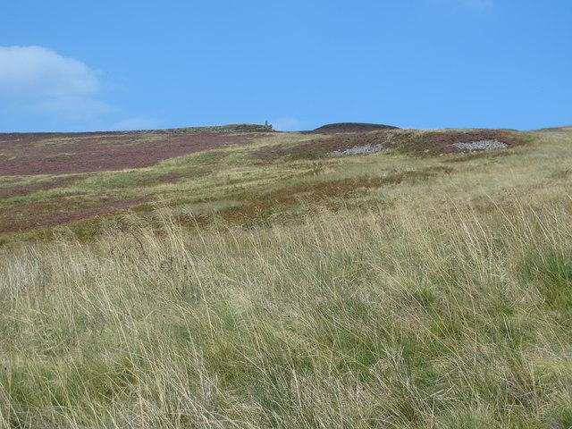 Moorland east of Gairs