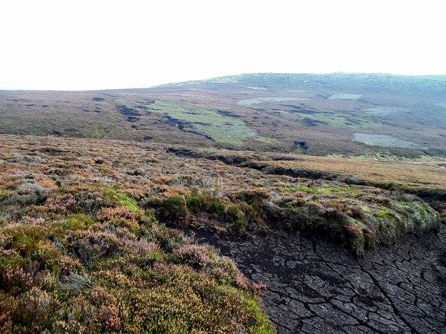 Moorland near the Derwent Source