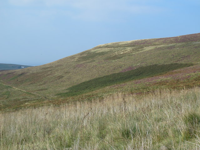 The southern slopes of Brown Fell (2)