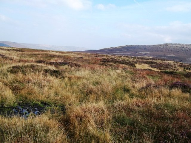 Moorland to the West of Swains Head