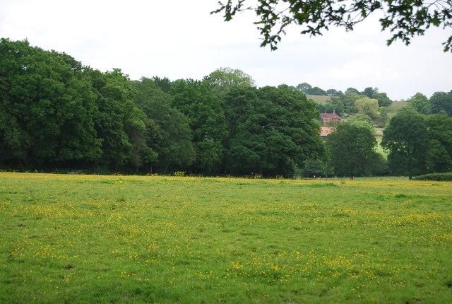 View towards Bassett's Manor