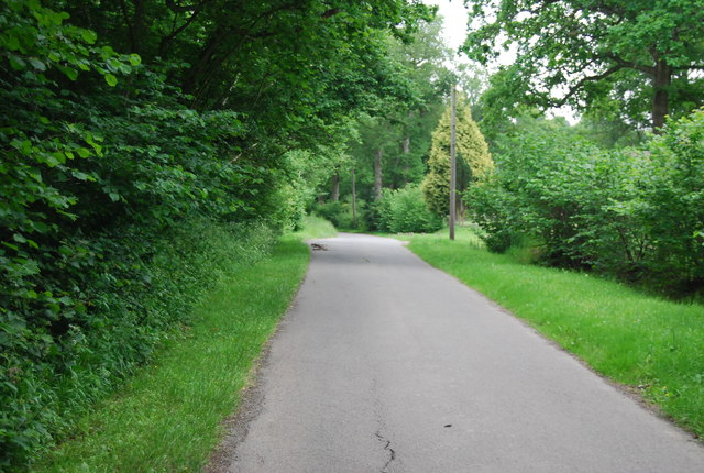Butcherfield Lane