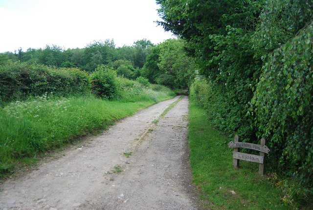 Track to Blackberry Farm, Butcher's Cross