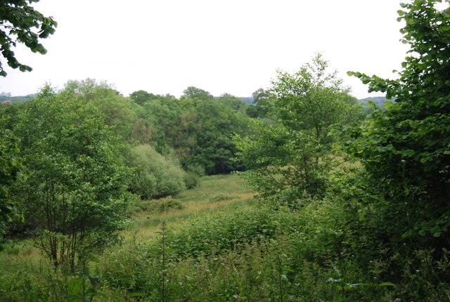 View from Butcherfield Lane