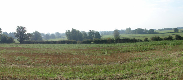 Panoramic view of the marshes at Rushmere St. Michael
