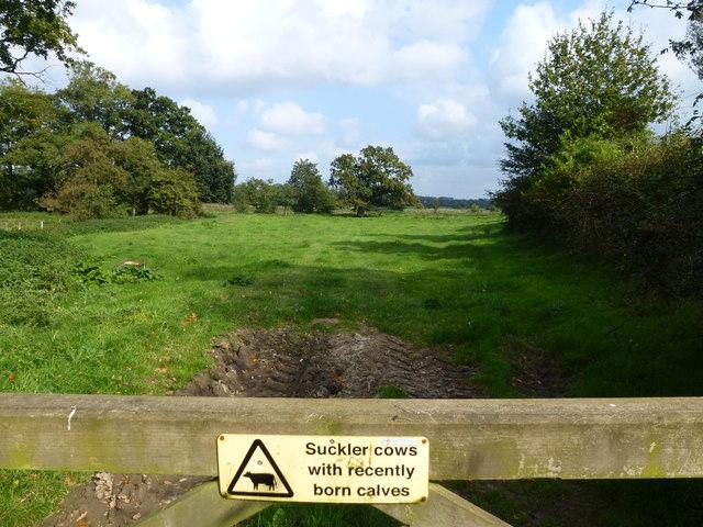 Notice on a field gate near Blickling Hall