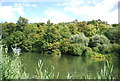 SU9083 : Wooded banks, River Thames by N Chadwick