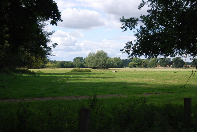 Field by the River Thames