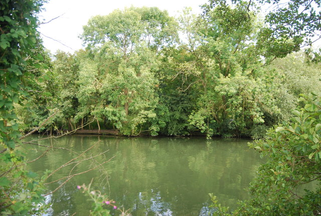 Wooded island in the Thames